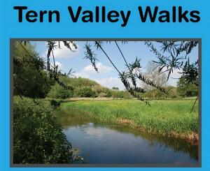 Tern-V-walks-sml